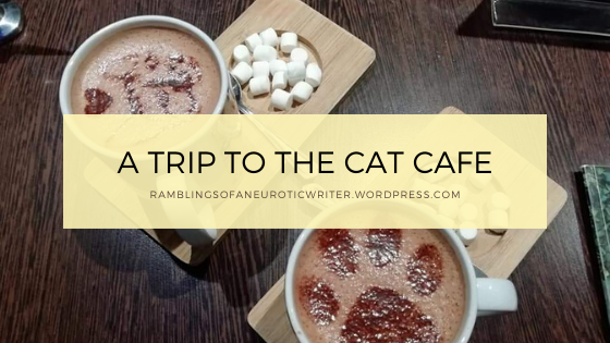 A Trip To The Cat Cafe